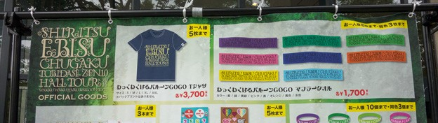 japan-trip-3-meiji-shrine-ebichu-dome-tour-2015-goods-sale