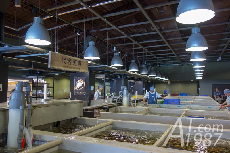 Taipei FIsh Market – Aquamarine Area